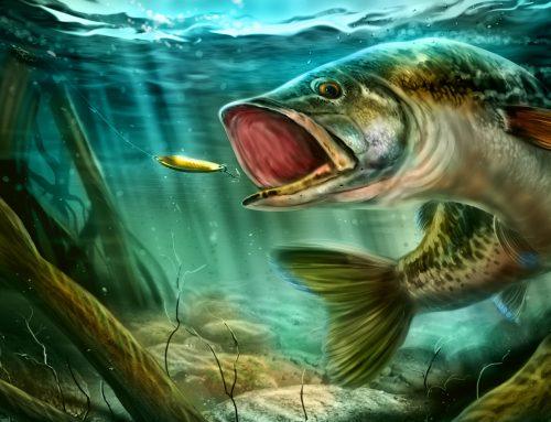 Ultimate Fishing Simulator reaches its Kickstarter goal!